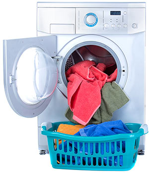 Paradise dryer repair service